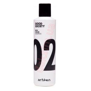 Шампунь Artego Rich Color 02 250 мл