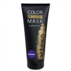 Artego маска оттеночная для волос Color Shine Черника Blueberry, 200 мл